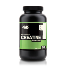 Optimum Nutrition Micronized Creatine Powder (300 GRAMS)